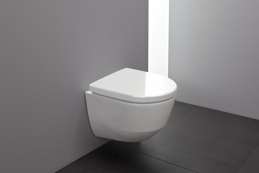 Wall Hung Wc Rimless Compact Washdown Without Flushing